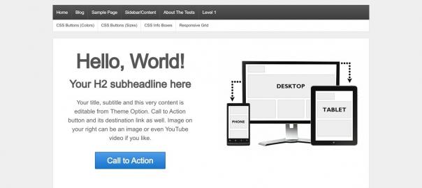 WordPress Theme - Responsive